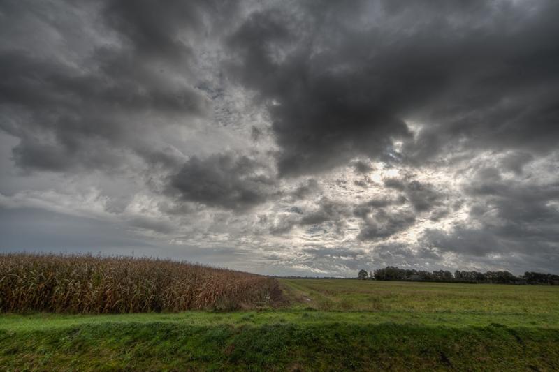 Reiderwolderpolder 21.10.2010 (Sigma 12-24mm f/4.0 DG HSM)