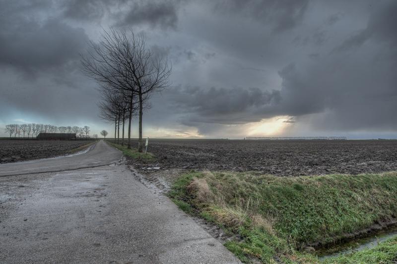 Johannes Kerkhoven Polder 12.12.2011 (Canon EF 16-35mm f/2.8L II USM)