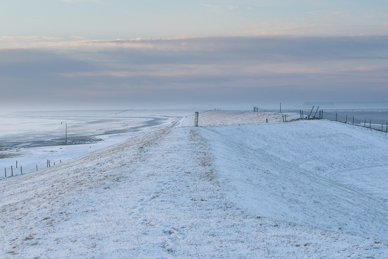 Polder Breebaart 08.12.2012 (Canon EF 16-35mm f/2.8L II USM)