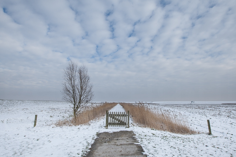 Polder Breebaart 25.01.2013 (Canon EF 16-35mm f/2.8L II USM)