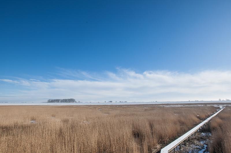 Nieuwe Statenzijl 30.01.2015 (Canon EF 16-35mm f/2.8L II USM)