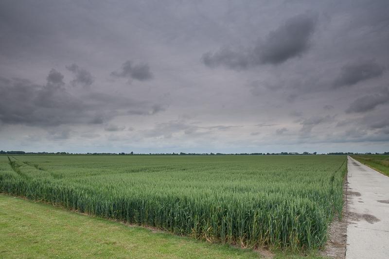 Hamer En Sikkellaan, Nieuw Beerta 14.06.2015 (Canon EF 16-35mm f/2.8L II USM)