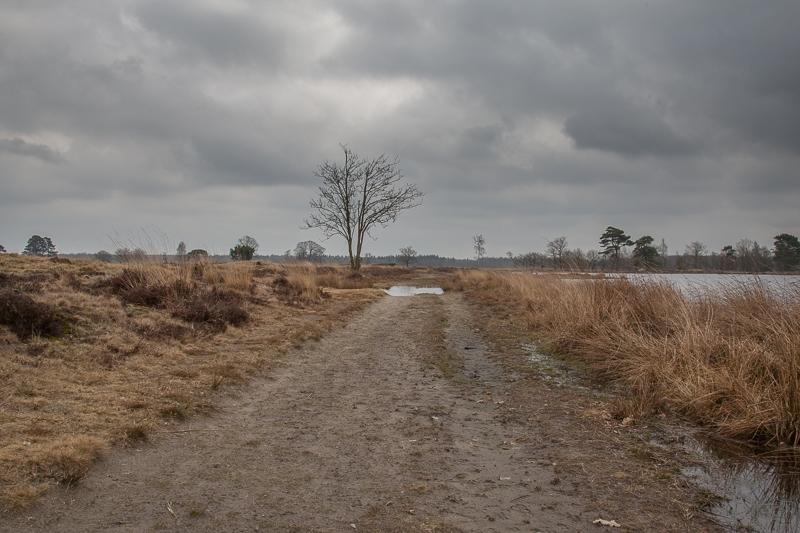 Aekingerzand 27.03.2010 (Canon EF 24-105mm f/4.0L IS)