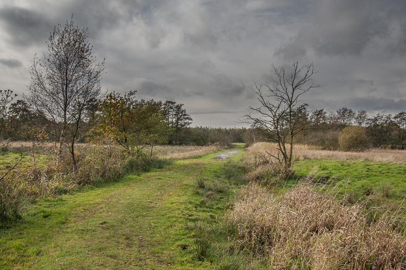 Oudemolense Veld 02.11.2012 (Canon EF 24-105mm f/4L IS USM)