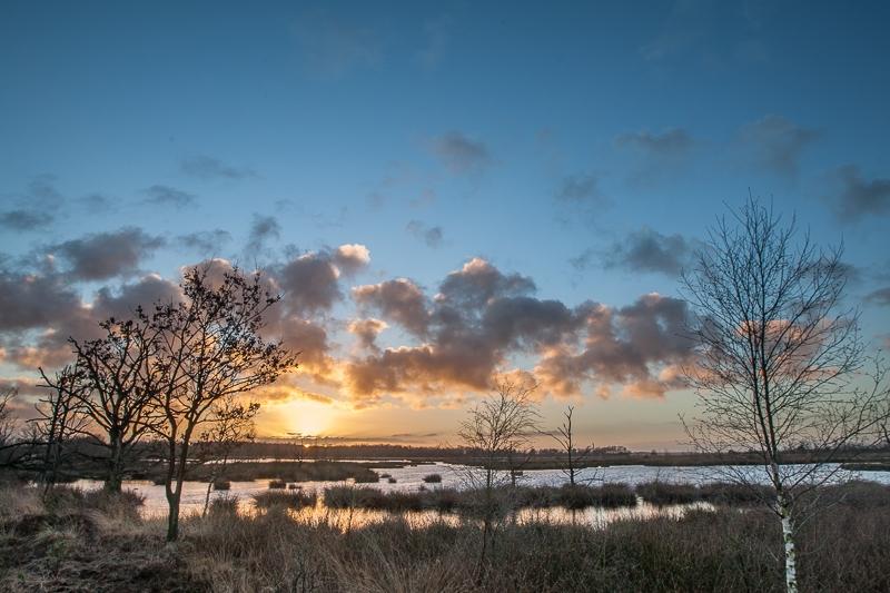 Holtveen, Kraloërheide 11.01.2014 (Canon EF 16-35mm f/2.8L II USM)