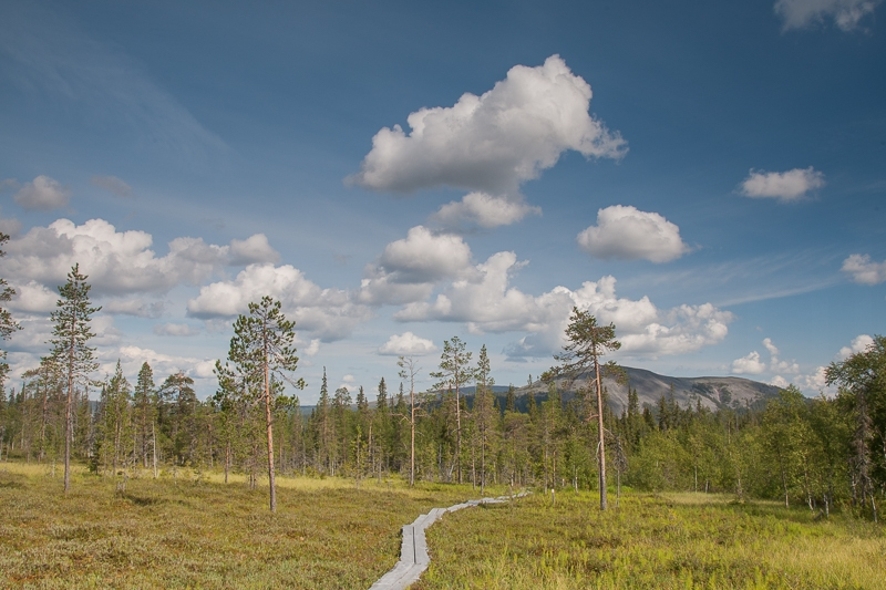 Varkaankuru 08.08.2010 (Canon EF 24-105mm f/4.0L IS)