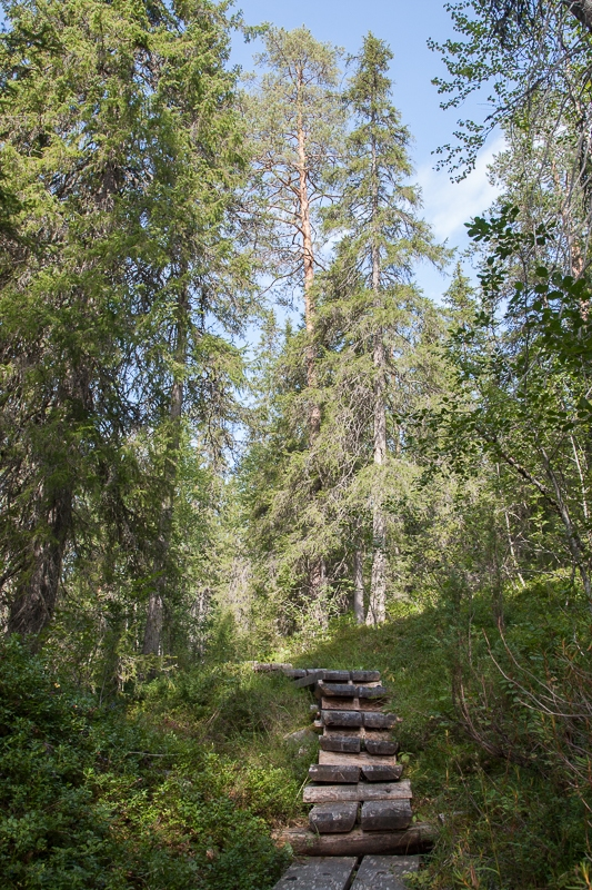 Närängänvaara 21.08.2010 (Canon EF 24-105mm f/4.0L IS)