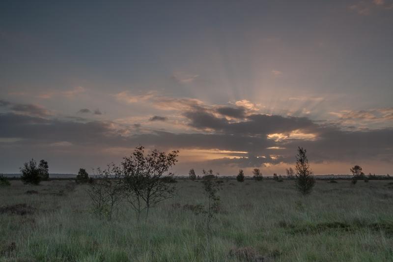 13.09.2011 (Canon EF 16-35mm f/2.8L II USM)