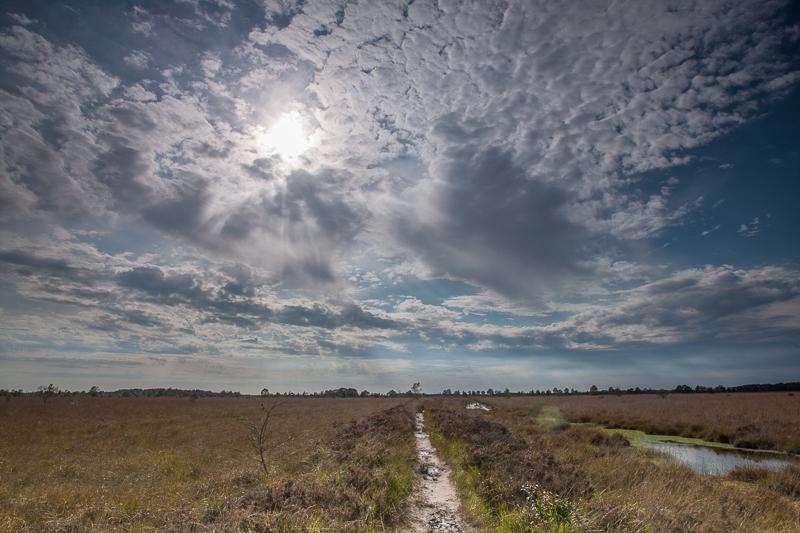 16.09.2011 (Canon EF 16-35mm f/2.8L II USM)