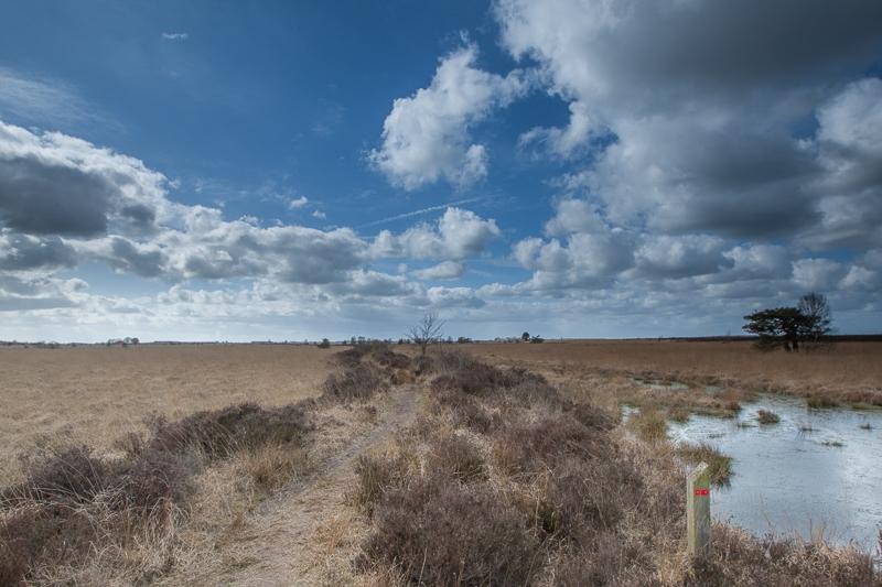 31.03.2012 (Canon EF 16-35mm f/2.8L II USM)