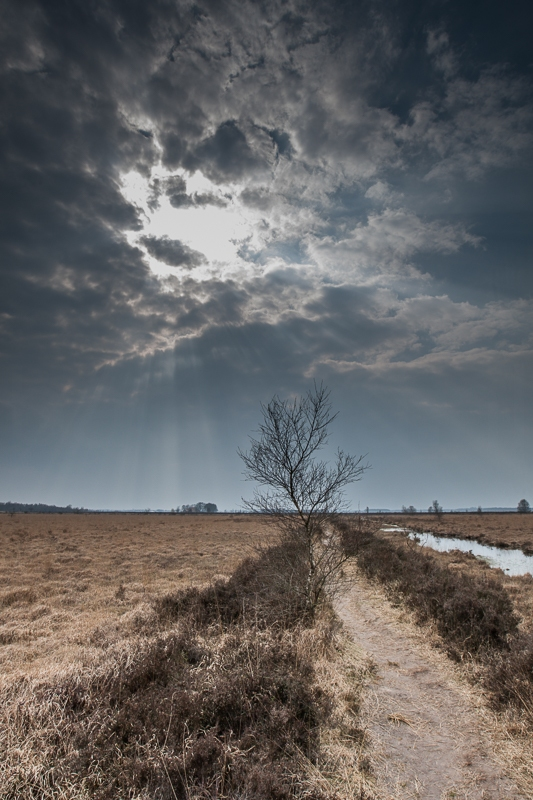 03.04.2012 (Canon EF 16-35mm f/2.8L II USM)