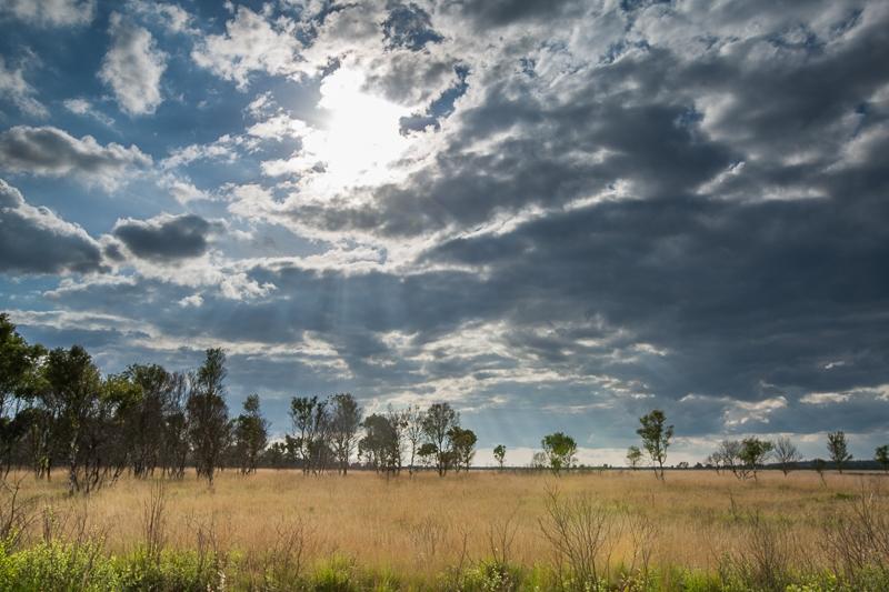 05.06.2012 (Canon EF 16-35mm f/2.8L II USM)