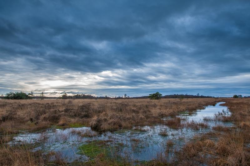 11.01.2013 (Canon EF 16-35mm f/2.8L II USM)