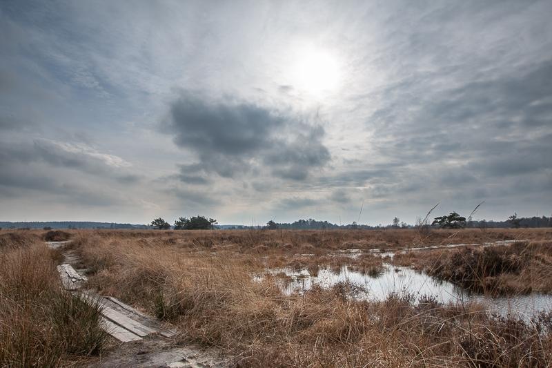 26.02.2015 (Canon EF 16-35mm f/2.8L II USM)