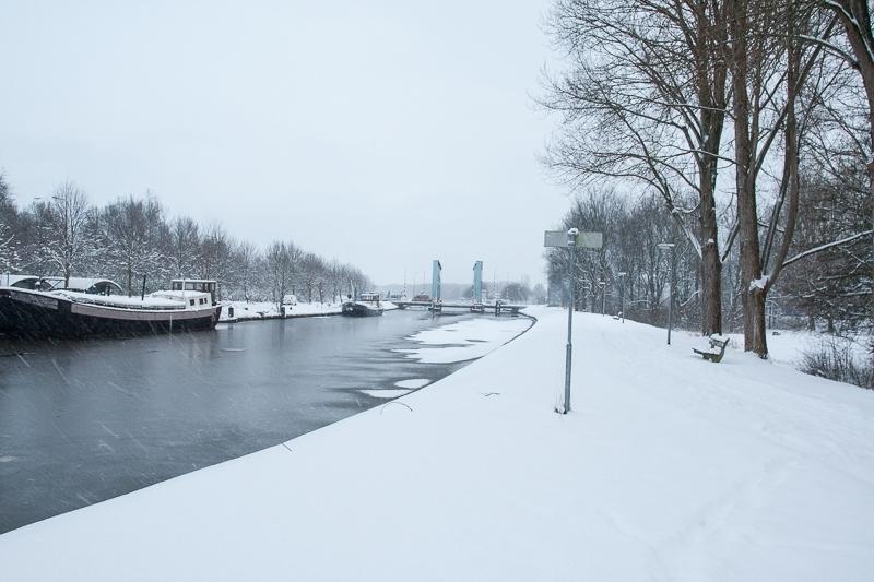 Hoornse Dijk, Groningen 18.12.2009 (Canon EF 24-105mm f/4.0L IS USM)