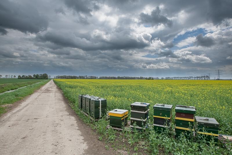 Nieuw Scheemda 10.05.2013 (Canon EF 16-35mm f/2.8L II USM)