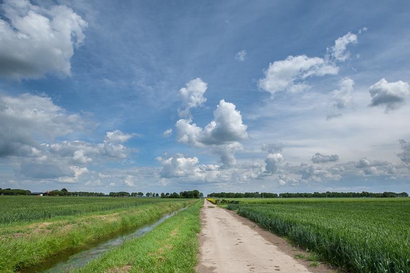 Hamrikkerweg, Nieuw Scheemda 14.06.2013 (Canon EF 16-35mm f/2.8L II USM)