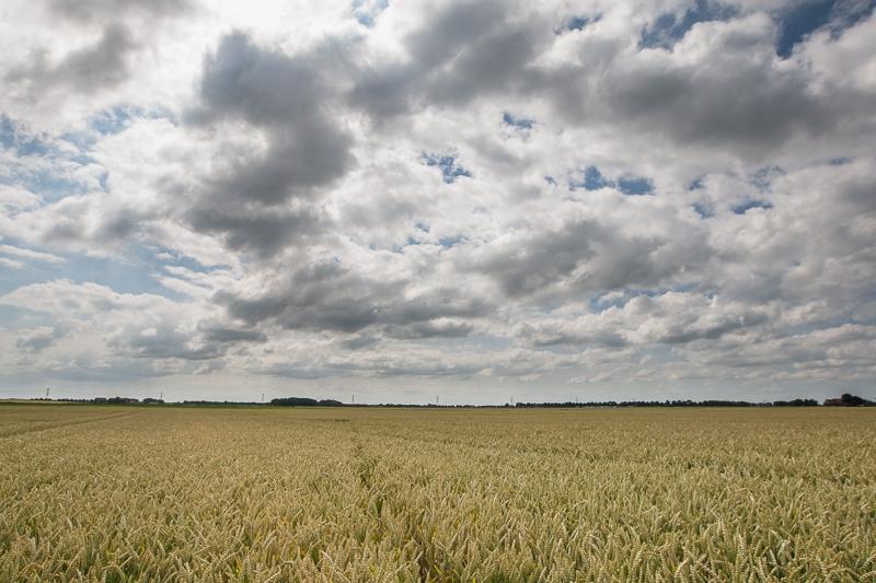 Pastorieweg, Nieuw Scheemda 02.07.2014 (Canon EF 16-35mm f/2.8L II USM)