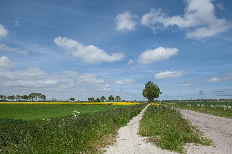 Meeden 23.05.2015 (Canon EF 16-35mm f/2.8L II USM)