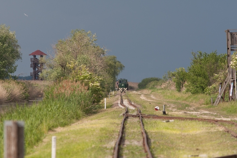 Helasto, Hortobagy 17.05.2014 (Canon EF 300mm f/4L IS USM + Canon EF 1.4x II Extender)