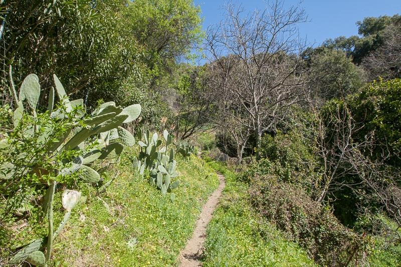 Los Alcornocales 24.02.2012 (Canon EF 16-35mm f/2.8L II USM)