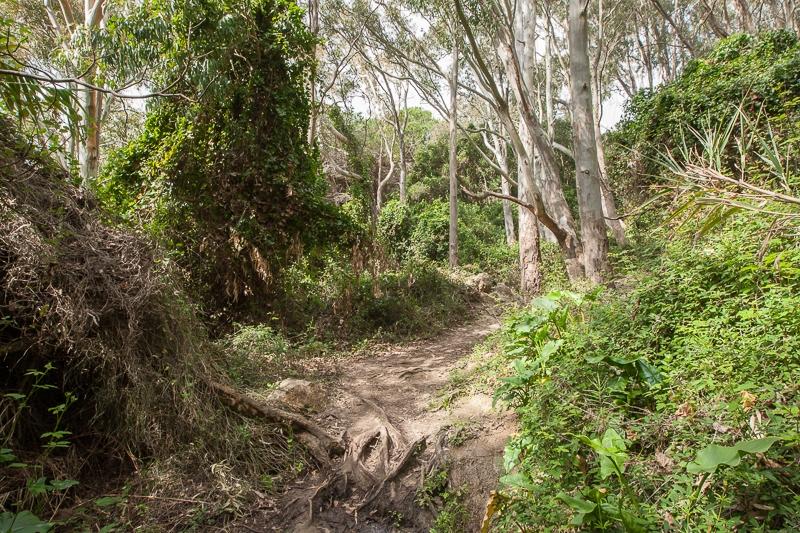 Parque Naturel del Estrecho 27.02.2012 (Canon EF 16-35mm f/2.8L II USM)