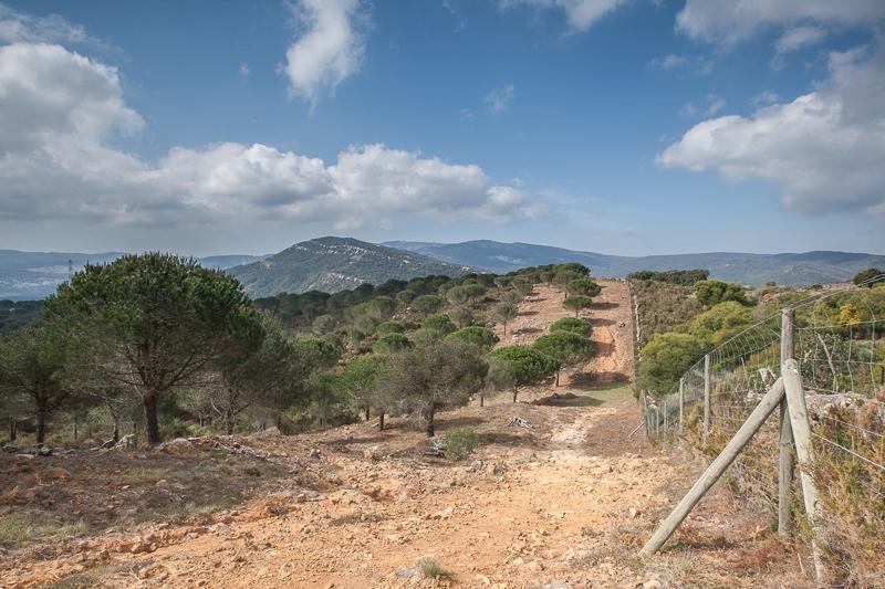 Sendero La Teja 28.02.2012 (Canon EF 16-35mm f/2.8L II USM)