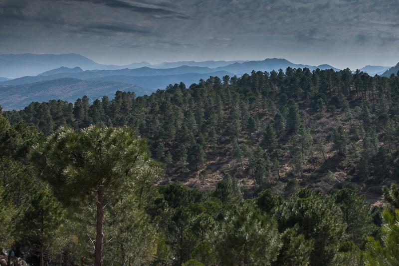 Sierra de Grazalema 01.03.2012 (Canon EF 24-105mm f/4L IS USM)