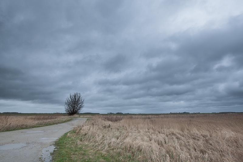 10.01.2015 (Canon EF 16-35mm f/2.8L II USM)