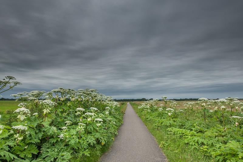 29.06.2012 (Canon EF 16-35mm f/2.8L II USM)