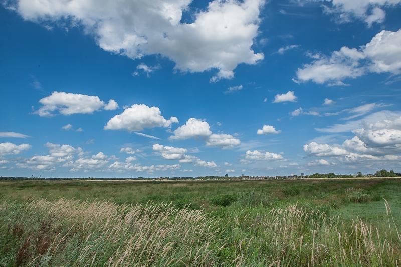 03.08.2013 (Canon EF 16-35mm f/2.8L II USM)
