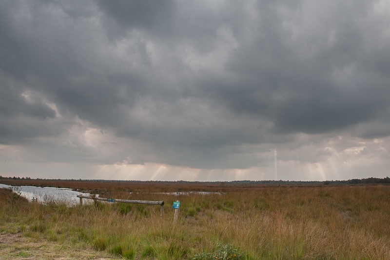 Engbertsdijksvenen 05.10.2010 (Canon EF 24-105mm f/4L IS USM)
