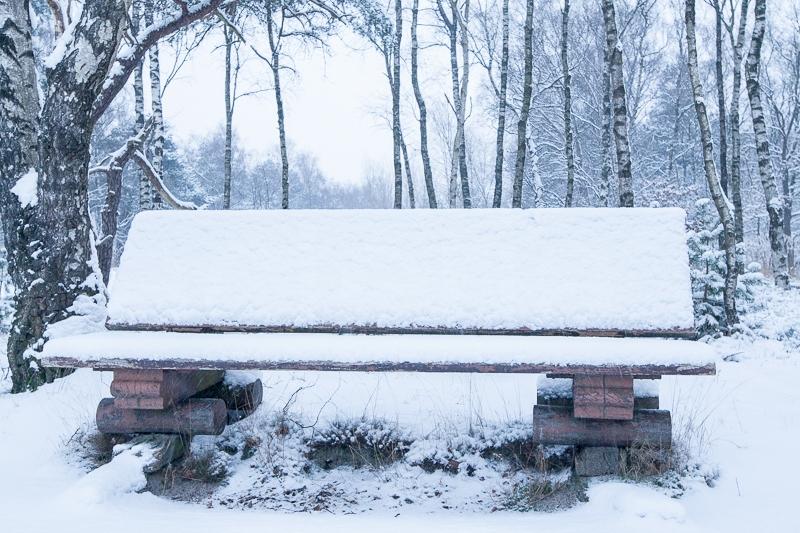 Sallandse Heuvelrug 15.01.2013 (Canon EF 16-35mm f/2.8L II USM)