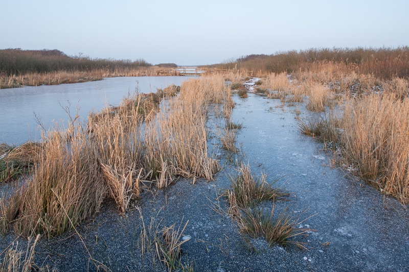 Zwanenwater 17.01.2013 (Canon EF 16-35mm f/2.8L II USM)