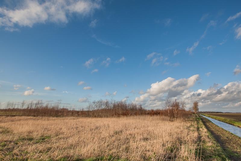 Ae's Woudbloem 21.03.2014 (Canon EF 16-35mm f/2.8L II USM)