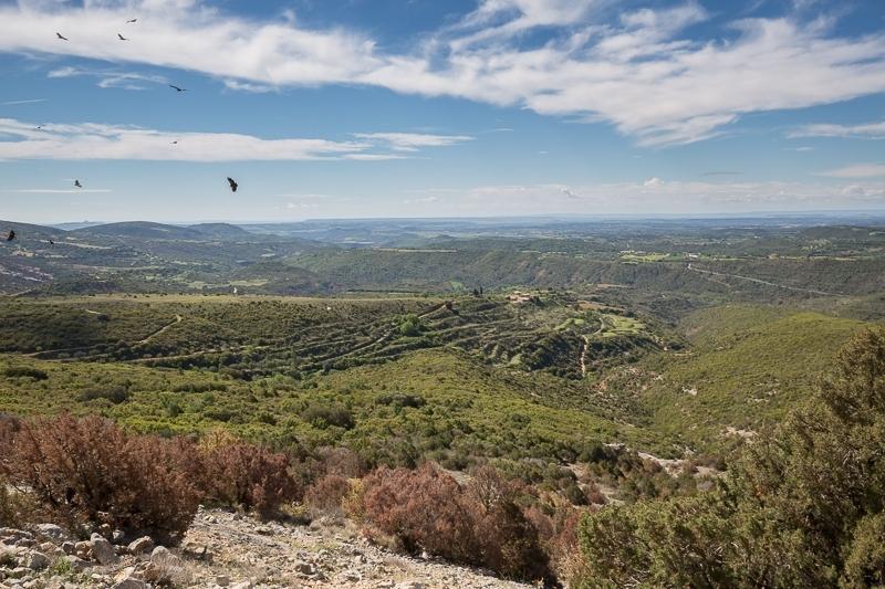 Santa Cilla, Spain 13.05.2017 (Canon EF 16-35mm f/4L IS USM)