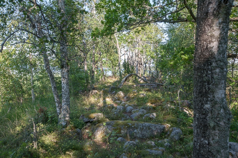 Nötön/Åråsviken 11.07.2011 (Canon EF 16-35mm f/2.8L II USM)