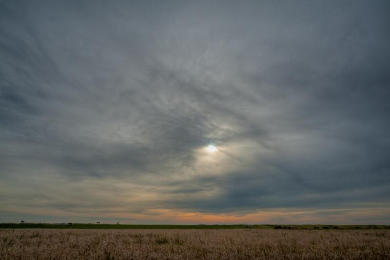 Noordpolder 27.10.2011 (Sigma 12-24mm f/4.5-5.6 EX DG HSM)