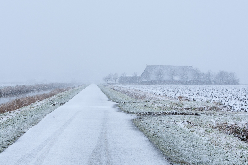 Noordpolder 05.12.2012 (Canon EF 70-200mm f/2.8L IS USM)