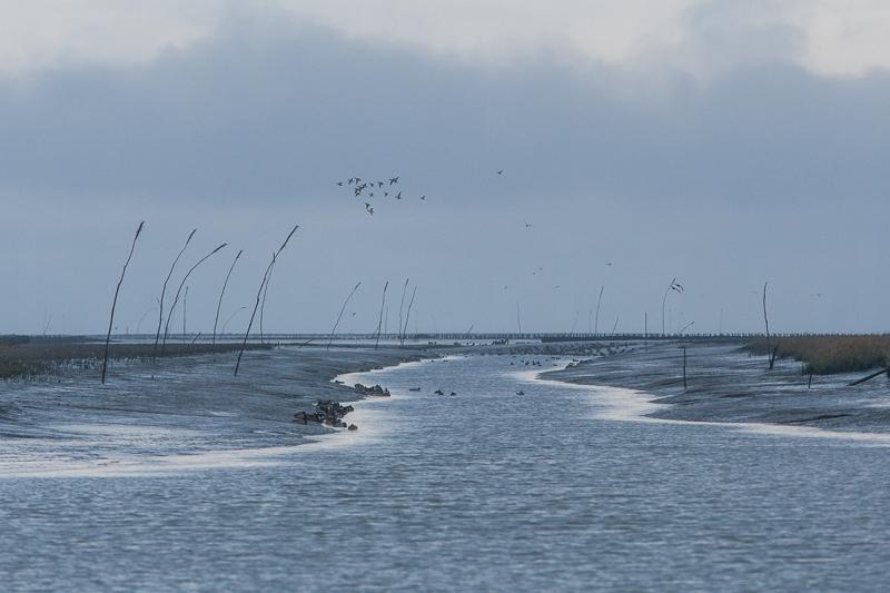 Noordpolderzijl 05.12.2012 (Canon EF 16-35mm f/2.8L II USM)
