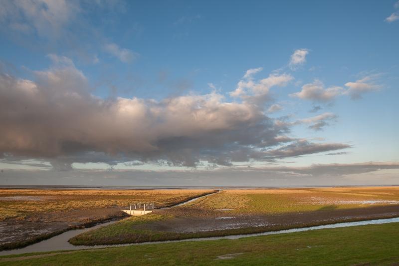 Linthorst Homanpolder 24.11.2014 (Canon EF 16-35mm f/2.8L II USM)