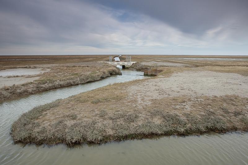 Noordpolder 07.03.2015 (Canon EF 16-35mm f/2.8L II USM)