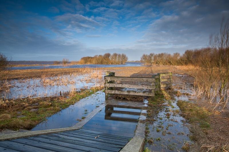 Westerbroekstermadepolder 08.01.2012 (Canon EF 16-35mm f/2.8L II USM)
