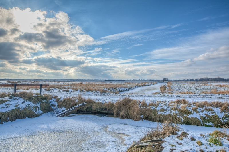 Onnerpolder 09.02.2012 (Canon EF 16-35mm f/2.8L II USM)